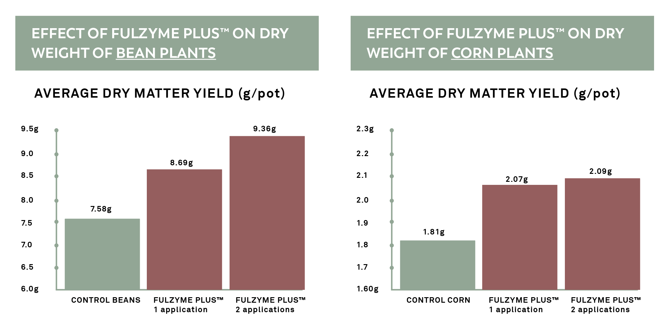 Dry Matter is significantly increased with the use of Fulzyme Plus